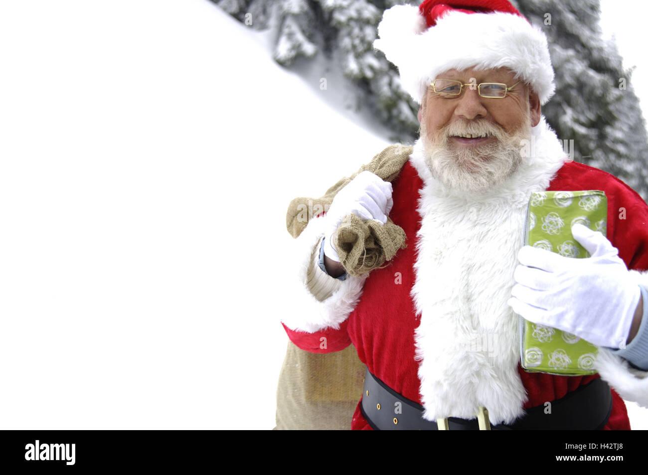 Winter Holz, Santa Claus, Beutel, Geschenke, Carry, Lächeln, Porträt ...