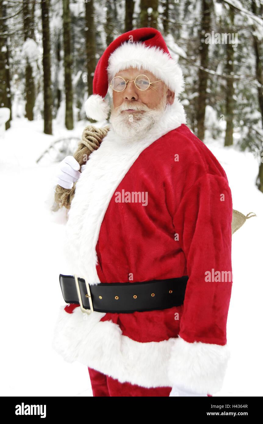 Winter Holz, Santa Claus, Beutel, tragen, Weihnachten, Leute, Mann ...