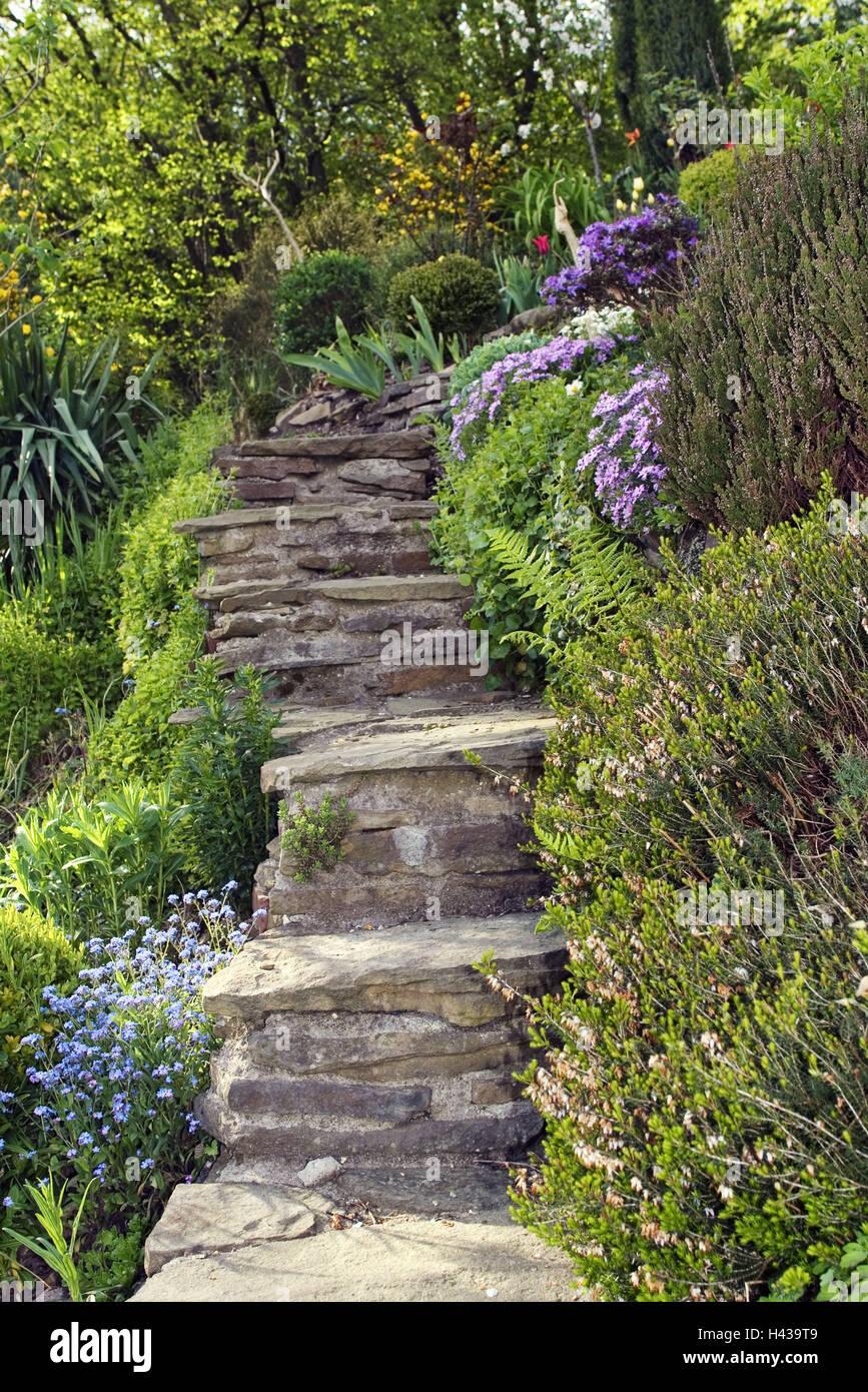 Steintreppe Garten eine steintreppe garten stockfoto bild 123004793 alamy