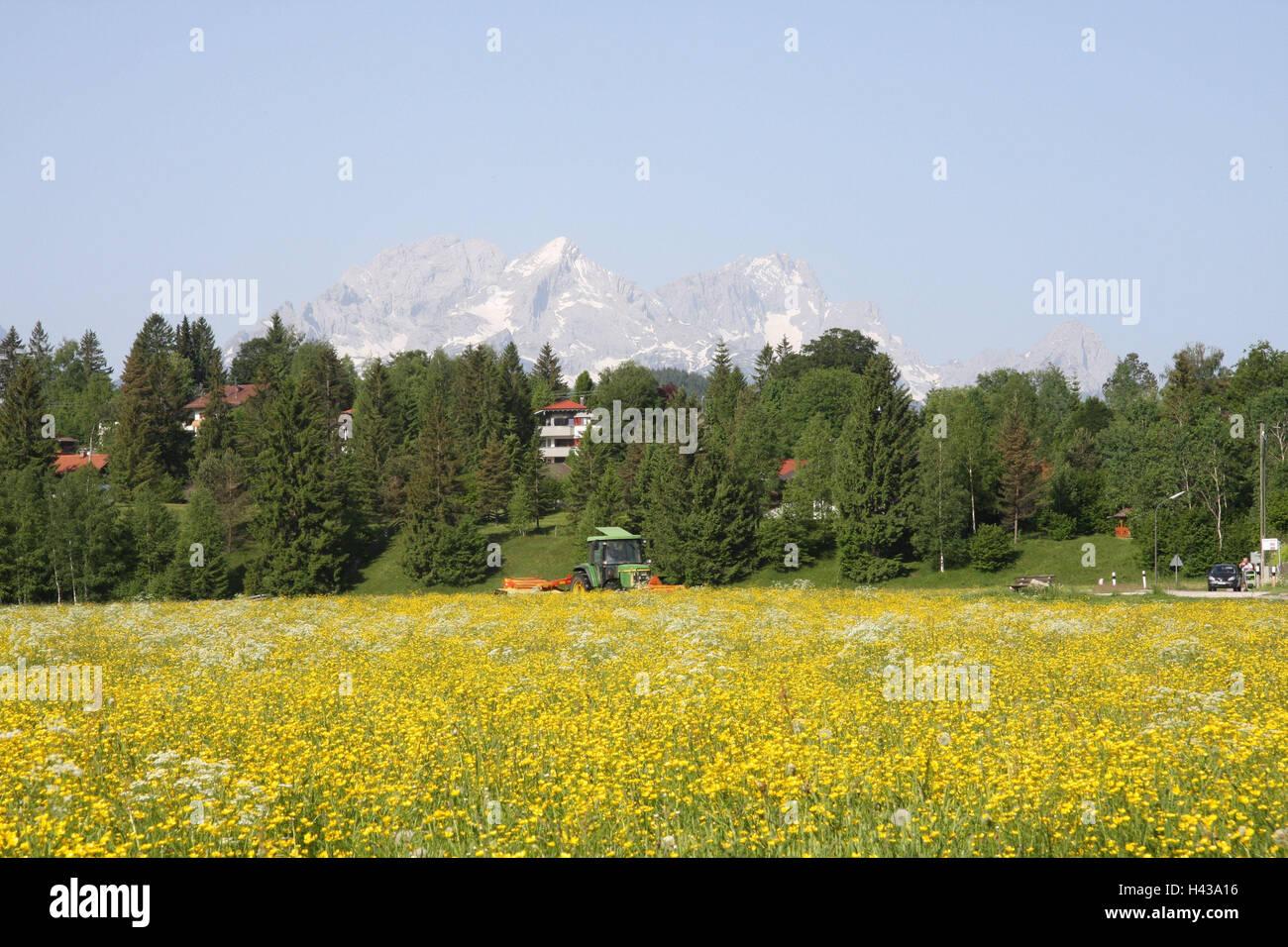 Deutschland Oberbayern Krun Blumenwiese Hugel Hauser