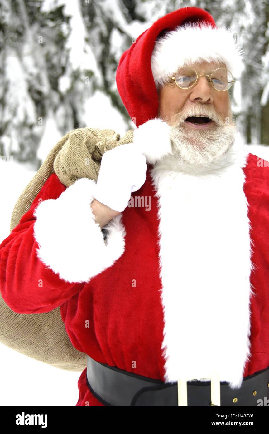 Winter Holz, Santa Claus, Beutel, Laterne, tragen, lachen, Porträt ...