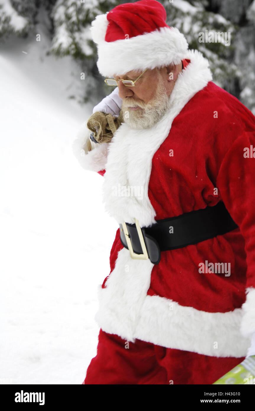 Winter-Holz, Santa Claus, pouch, Geschenke, tragen, Weihnachten ...