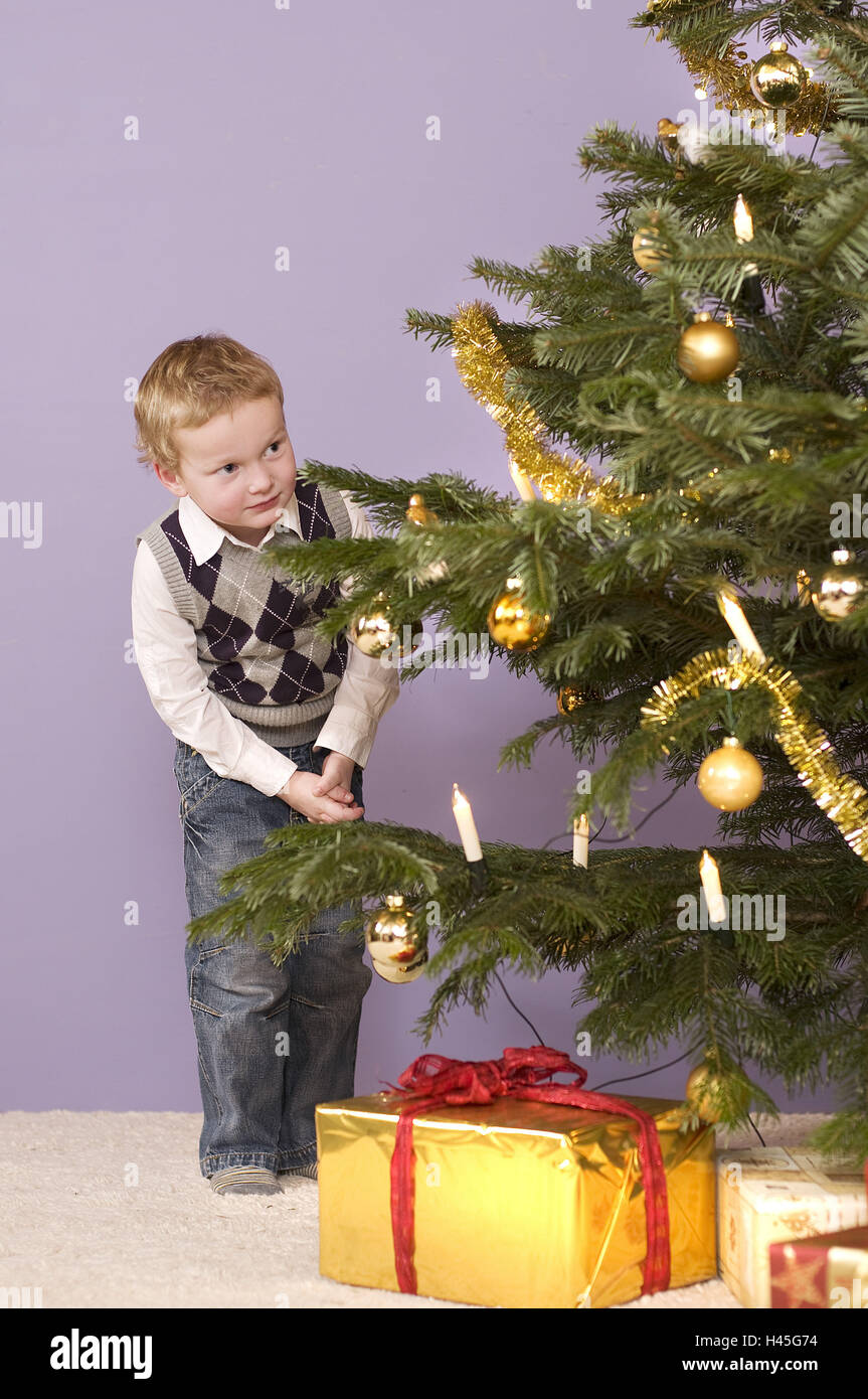 Junge, Weihnachtsbaum, heimlich, aussehen, Stockbild