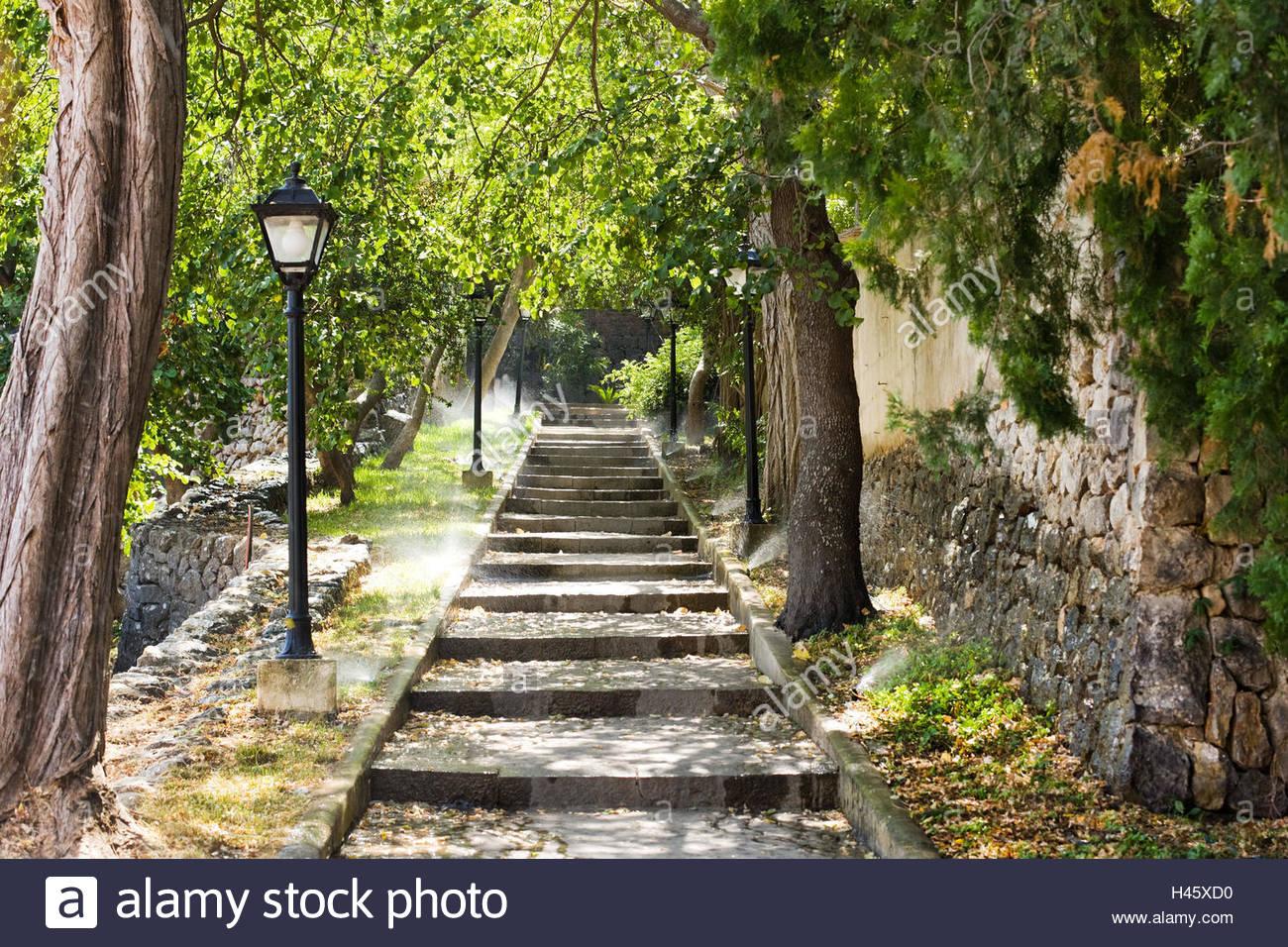 Treppen Park Garten Romantisch Grunes Gegenlicht Schritte