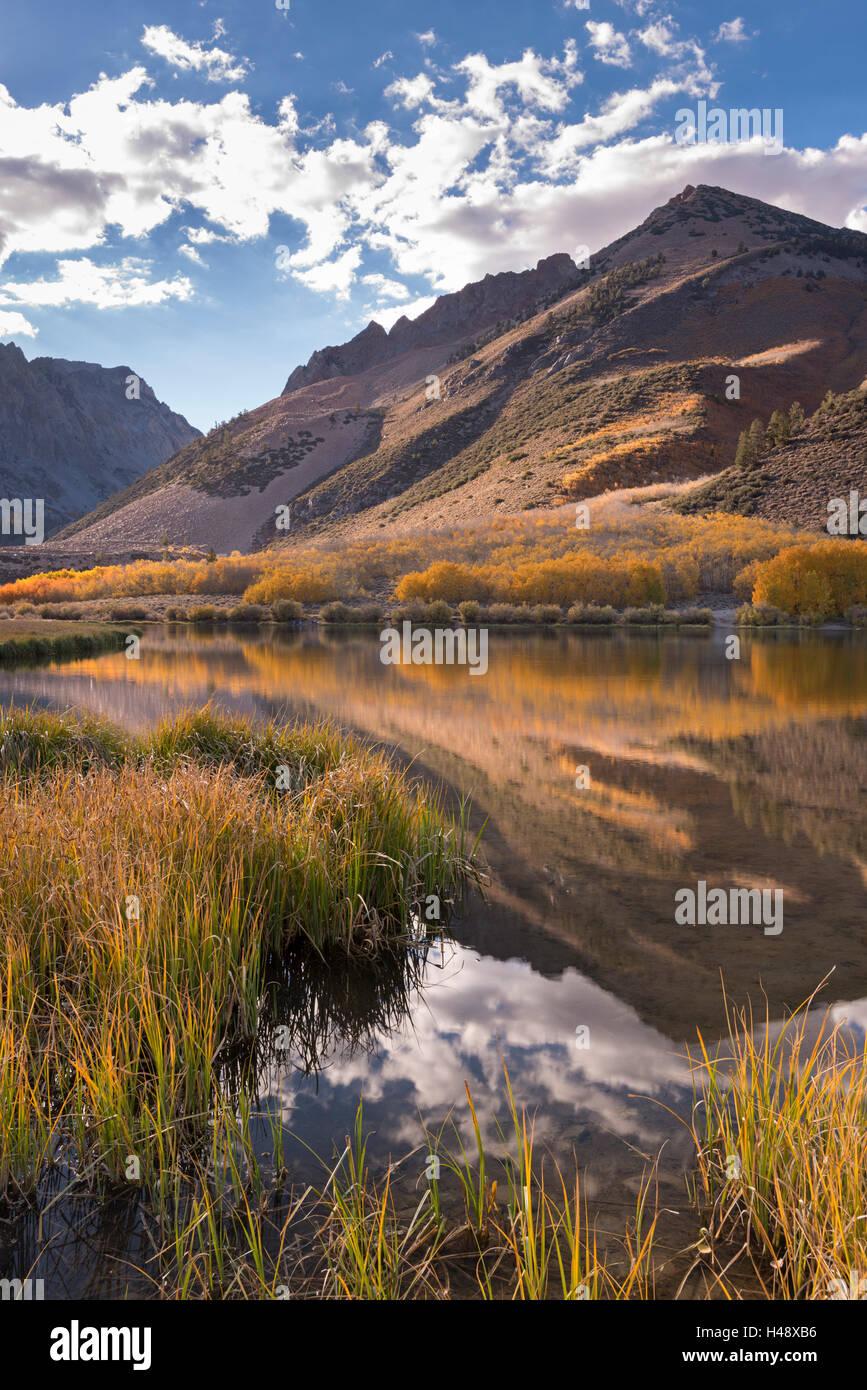 Herbstfarben säumen das Ufer des North Lake in der Nähe von Bischof, Eastern Sierras, California, USA. Stockbild