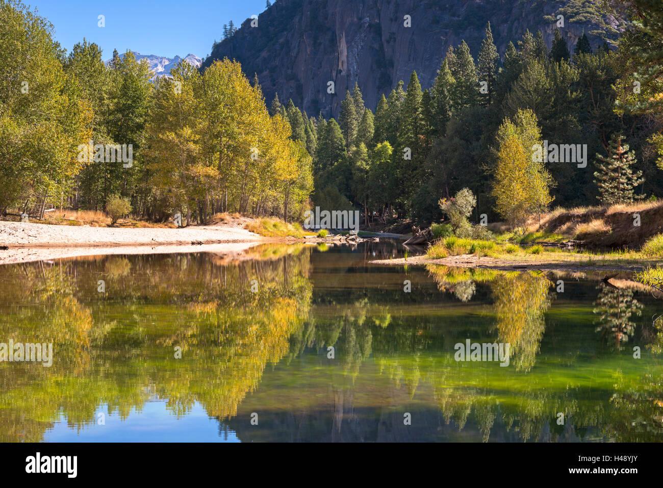 Bunter Herbst Bäume flankieren die Merced River im Yosemite Valley, Kalifornien, USA. Herbst (Oktober) 2014. Stockbild