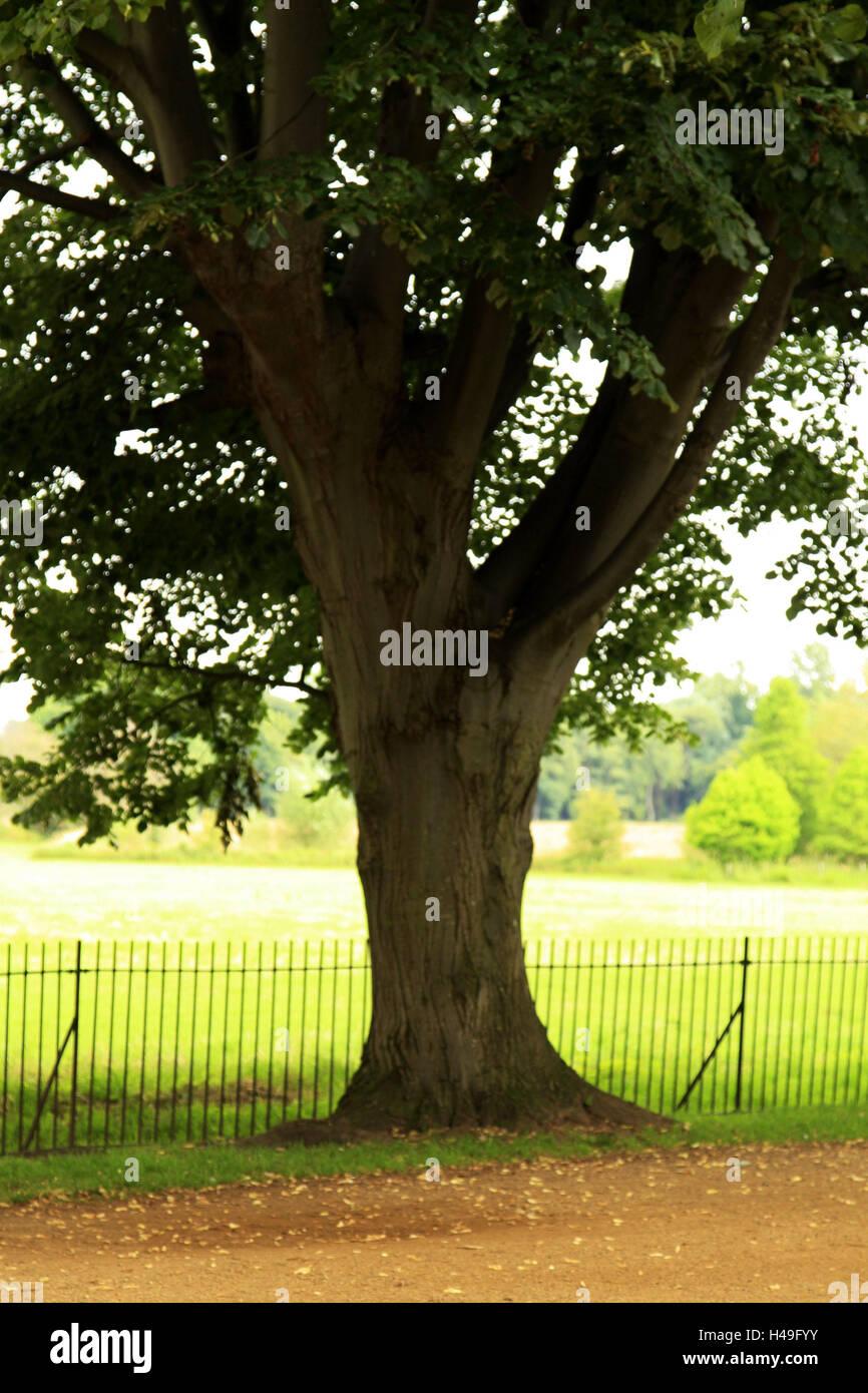 Broad Way Stockfotos & Broad Way Bilder - Alamy