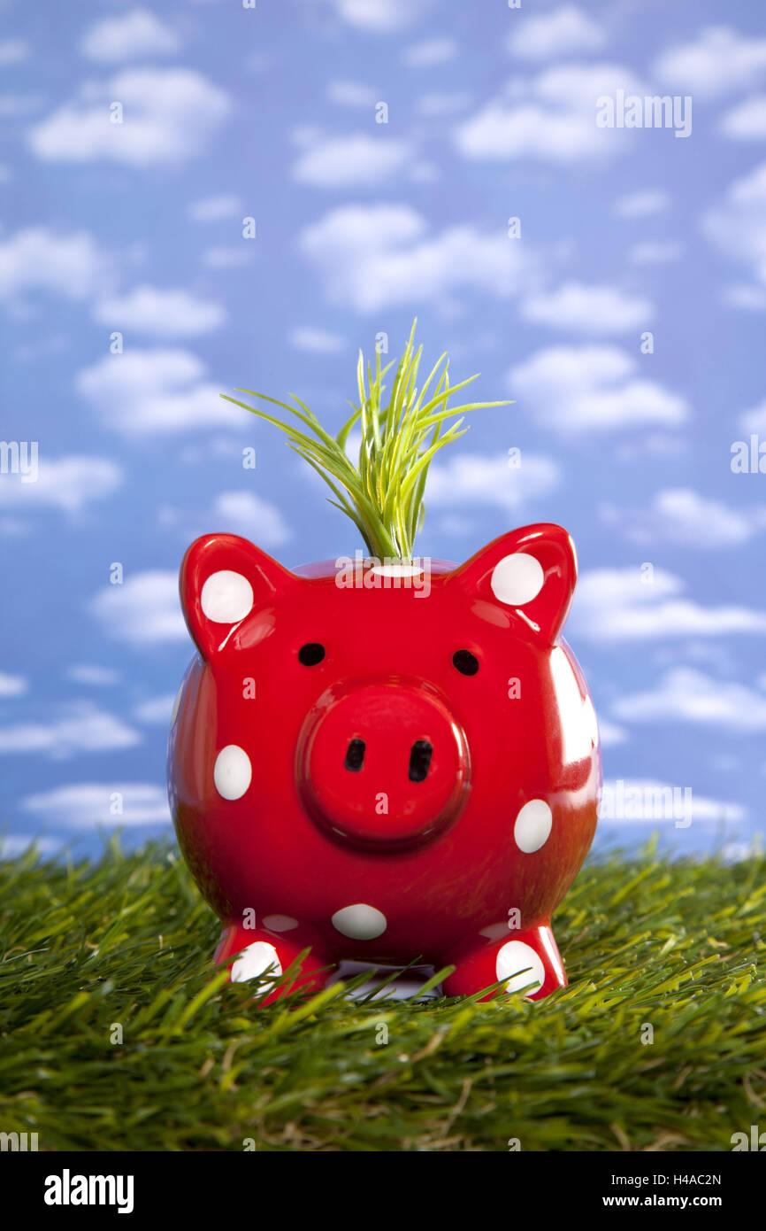 Symbolisches Bild, sparen, Geld, Sparschwein, umweltfreundlich, Stockbild