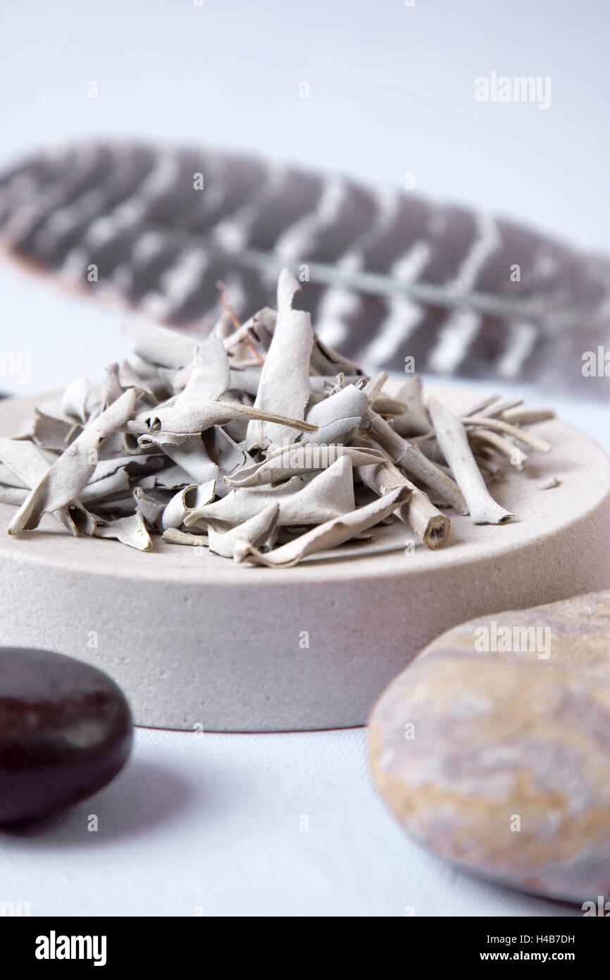 Indische Medizin, alternative Heilmittel, Weihrauch-Materialien, Stockbild