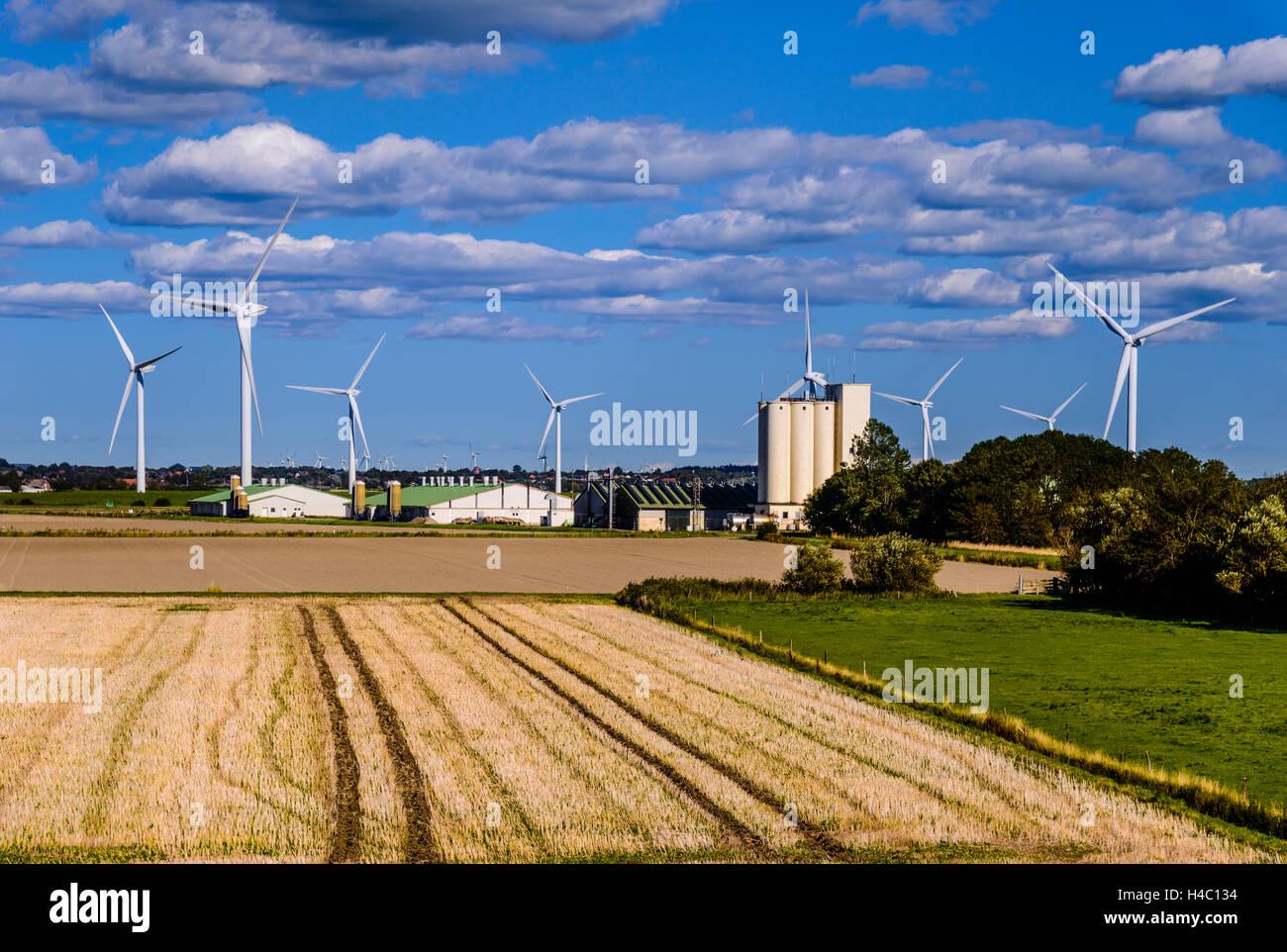 Deutschland, Schleswig-Holstein, Nordfriesland, nordfriesischen ...