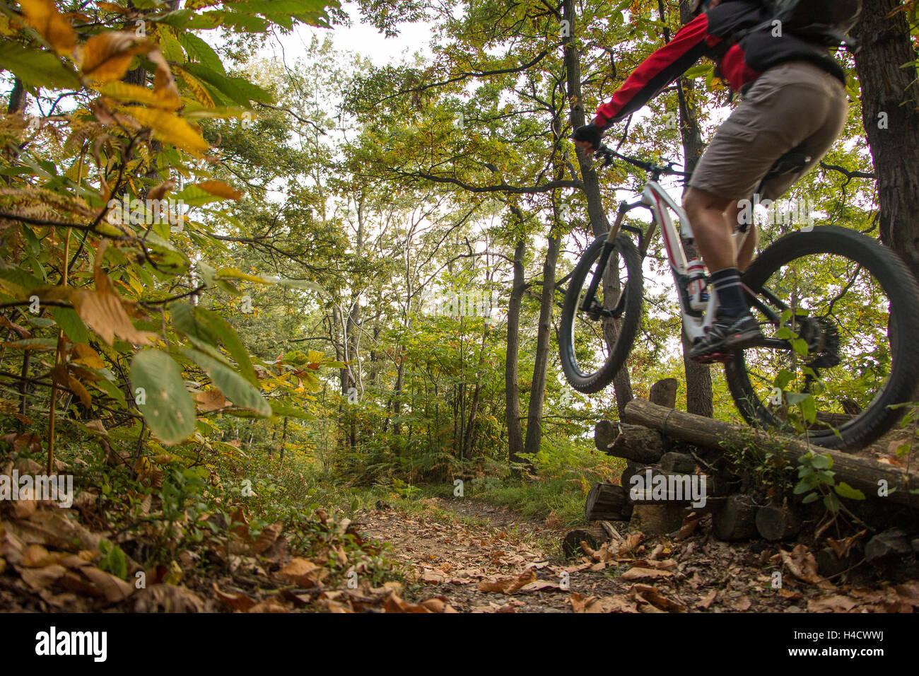 Mountain Bike springen Biker in den Wäldern der Serra Morenica bewaldeten Hügel und Wanderwege in Piemont Stockbild