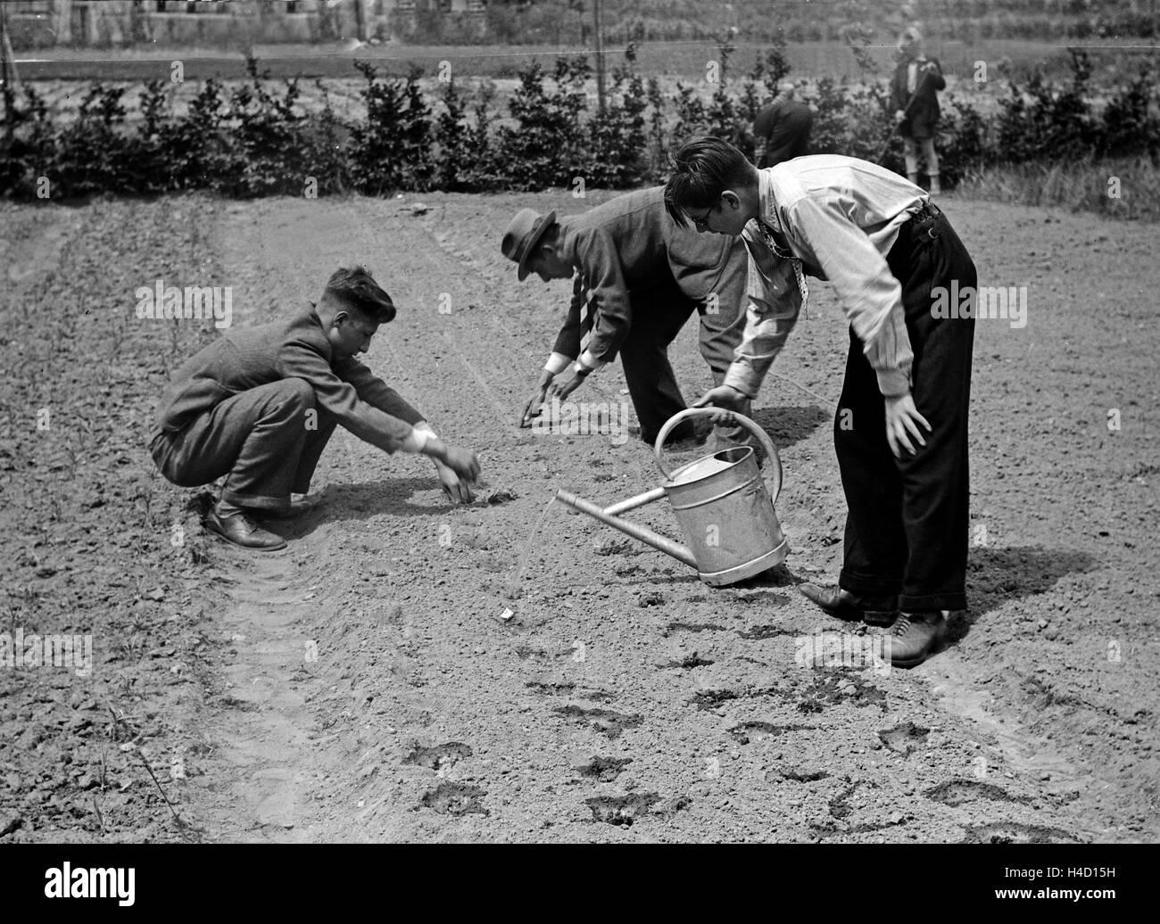 Im Garten der Berufsschule Wässern sterben Lehrjungen sterben Frische Saat, 1930er Jahre Deutschland. Bei der Stockbild