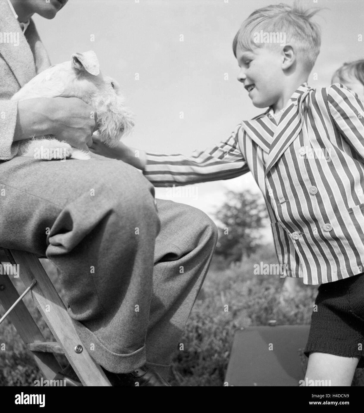 Ein Kleiner Junge Streichelt Einen Foxterrier, 1930er Jahre Deutschland. Ein kleiner Junge mit einem Fox Terrier, Stockbild
