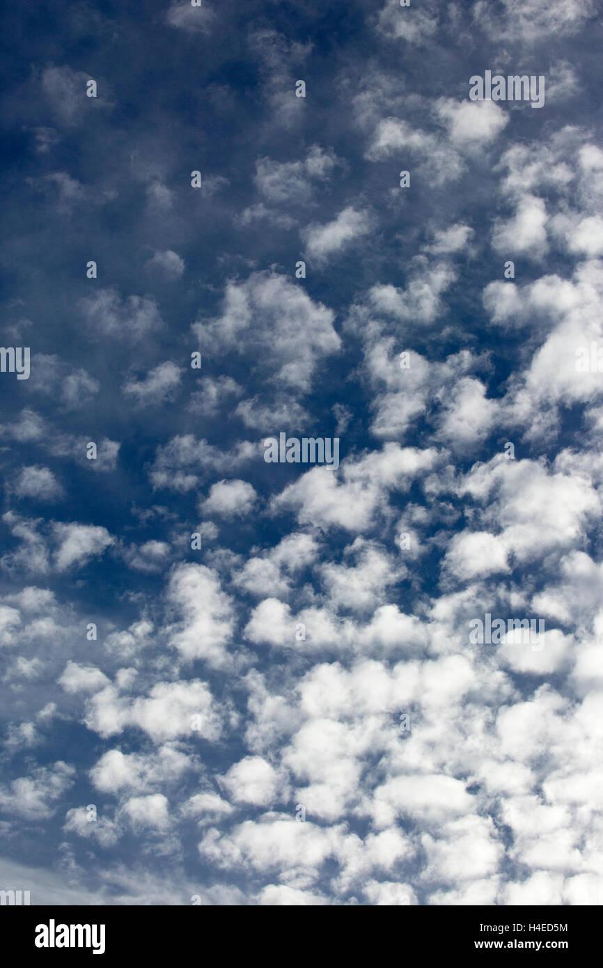 Altocumulus-Wolken am blauen Himmel Stockbild