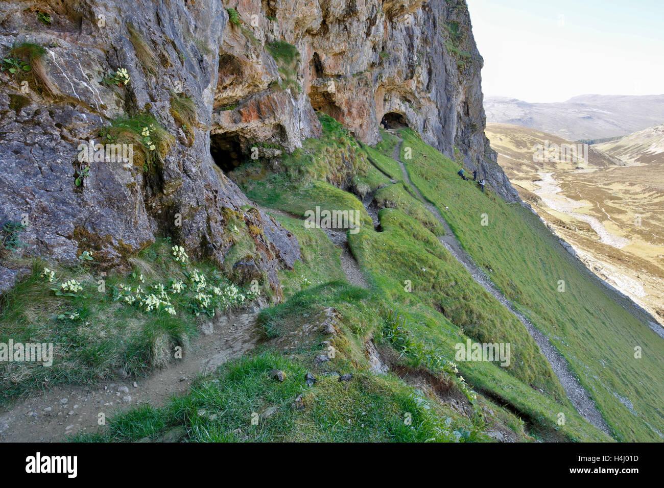 Knochen-Höhlen; Inchnadamph; Schottland; UK Stockbild