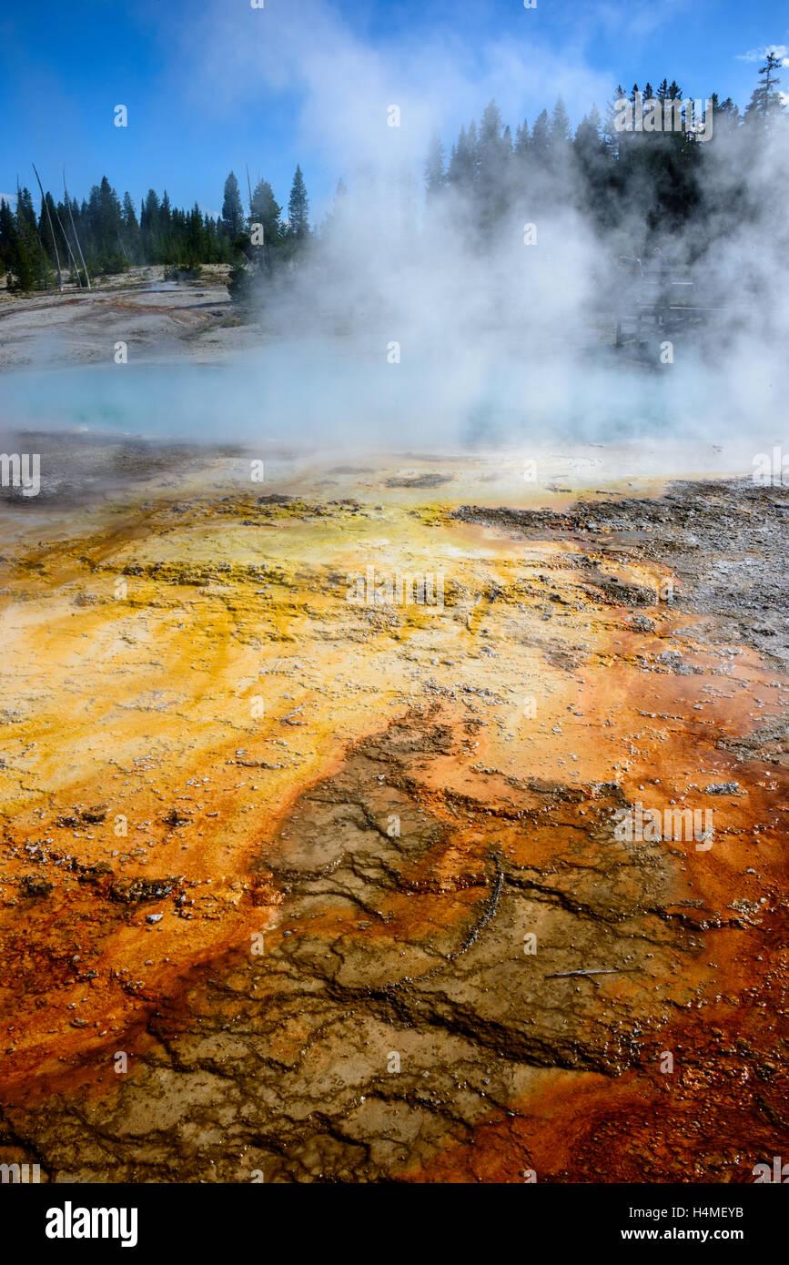 Yellowstone-Nationalpark Stockfoto