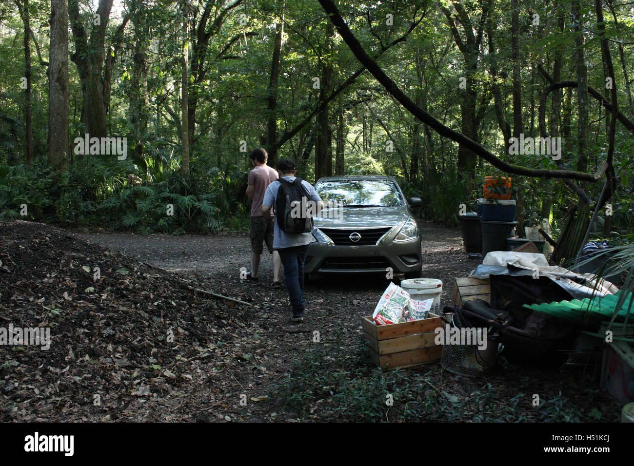 Sumpf / Regenwald in Florida schöne grüne Auto Bäume und Pflanzen 2 Personen zu Fuß durch Wald Stockbild