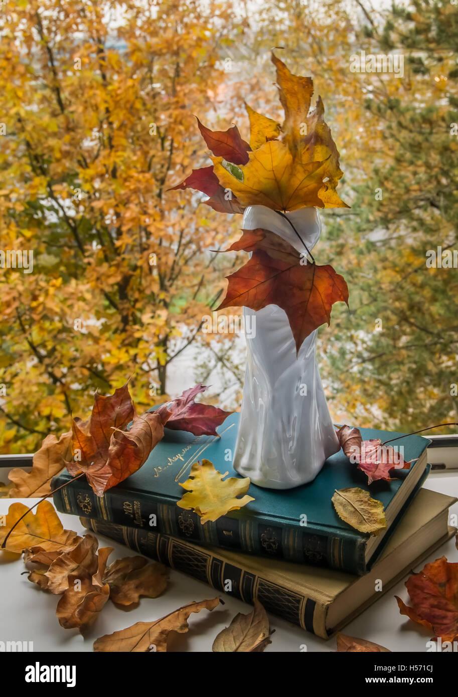 Stillleben mit einer Vase, Blätter im Herbst am offenen Fenster Stockbild