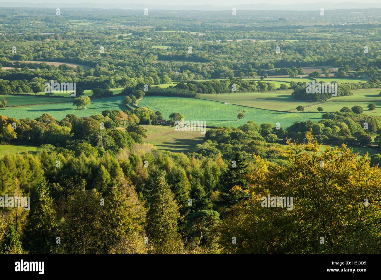 Ein Blick von Leith Hill Herbstnachmittag. North Downs, Surrey, England. Stockbild