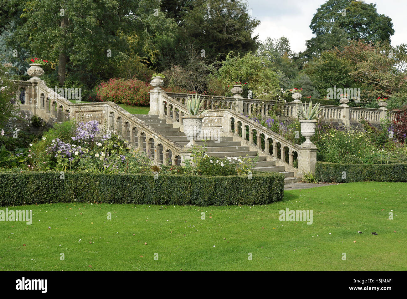 Eine formale englischer Landschaftsgarten mit Hedging-Box und steinernen Stufen und Geländer Stockbild