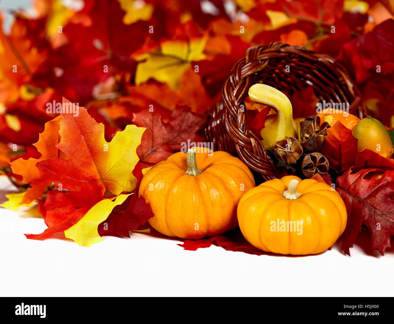 Atemberaubend Füllhorn Blätter Fotos - Malvorlagen Von Tieren ...
