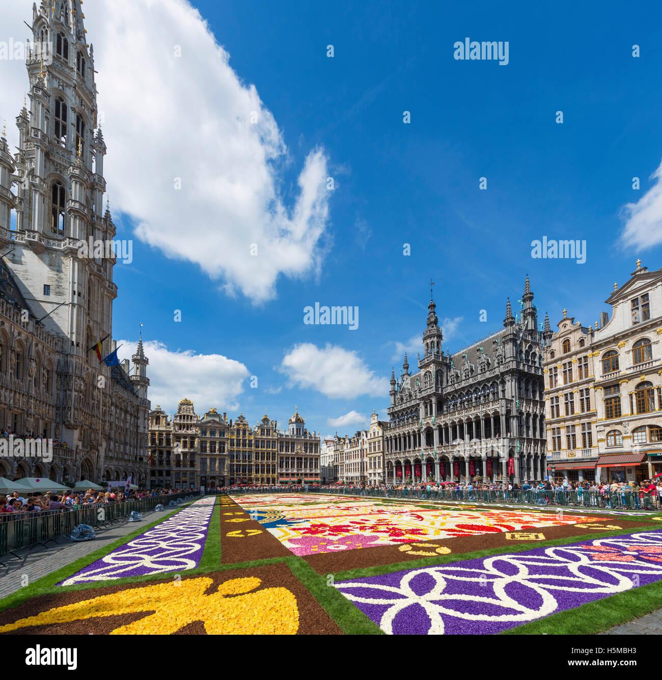 2016-Teppich von Blumen auf der Grand Place (Grote Markt) mit dem Rathaus auf der linken Seite, Brüssel, Belgien. Stockbild