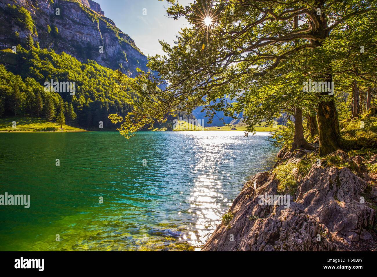 Seealpsee-See mit den Schweizer Alpen (Berg Santis), Appenzellerland, Schweiz Stockbild