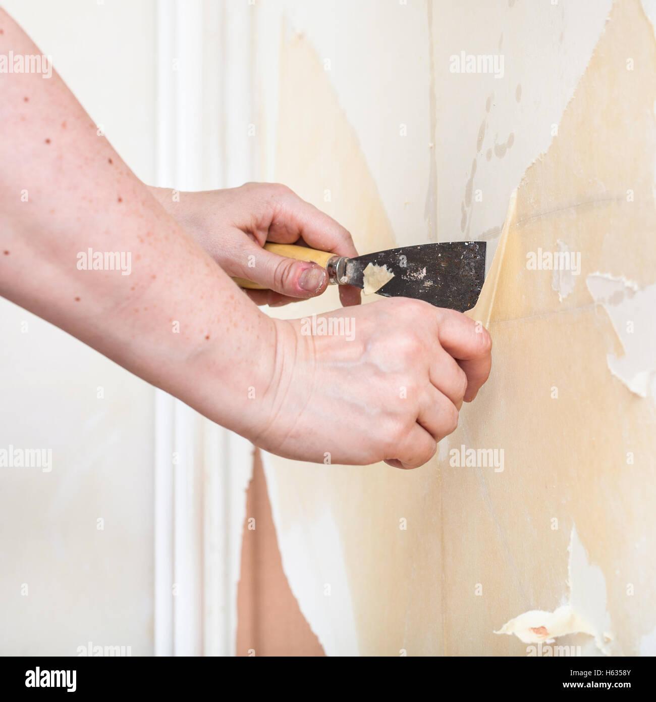 Tapete Reparieren reparatur der wohnung tapezieren: vorbereitung der wände. die