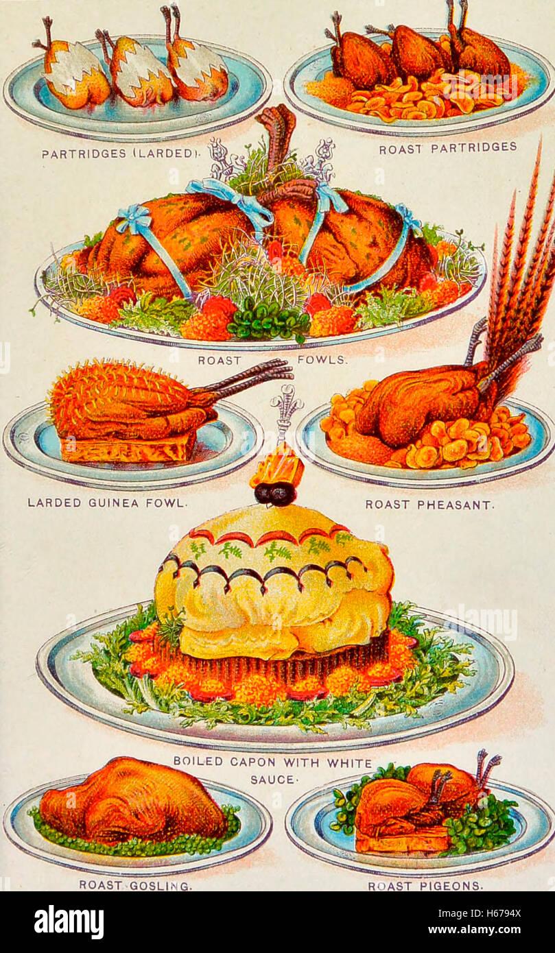 Abbildungen der verschiedenen Geflügel in einem Kochbuch, um 1900 Stockbild