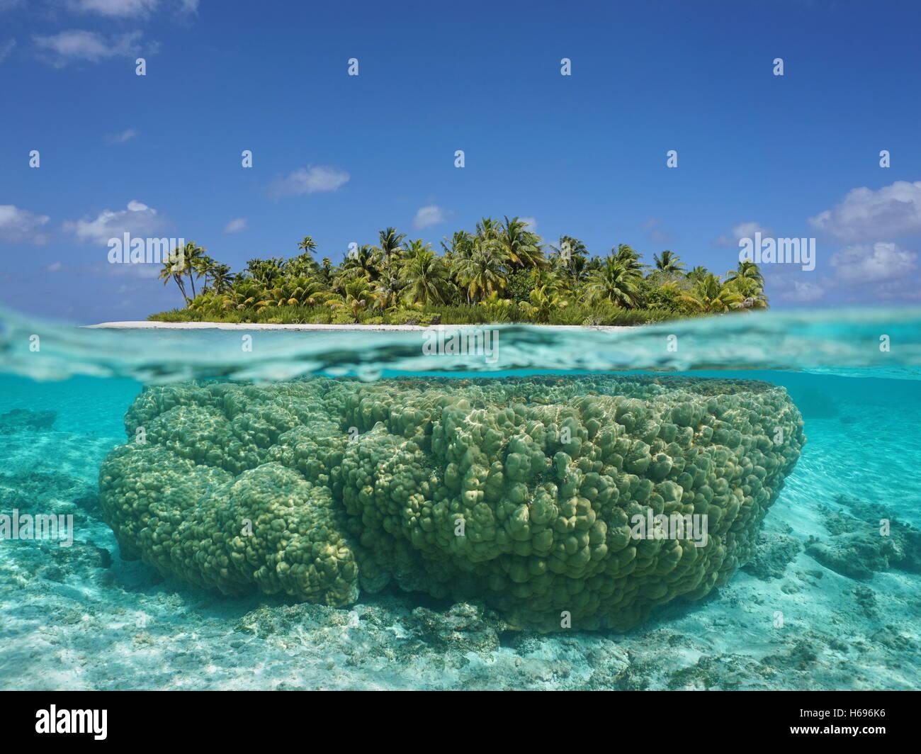 tropische insel oben und unterwasser mit korallen unter. Black Bedroom Furniture Sets. Home Design Ideas