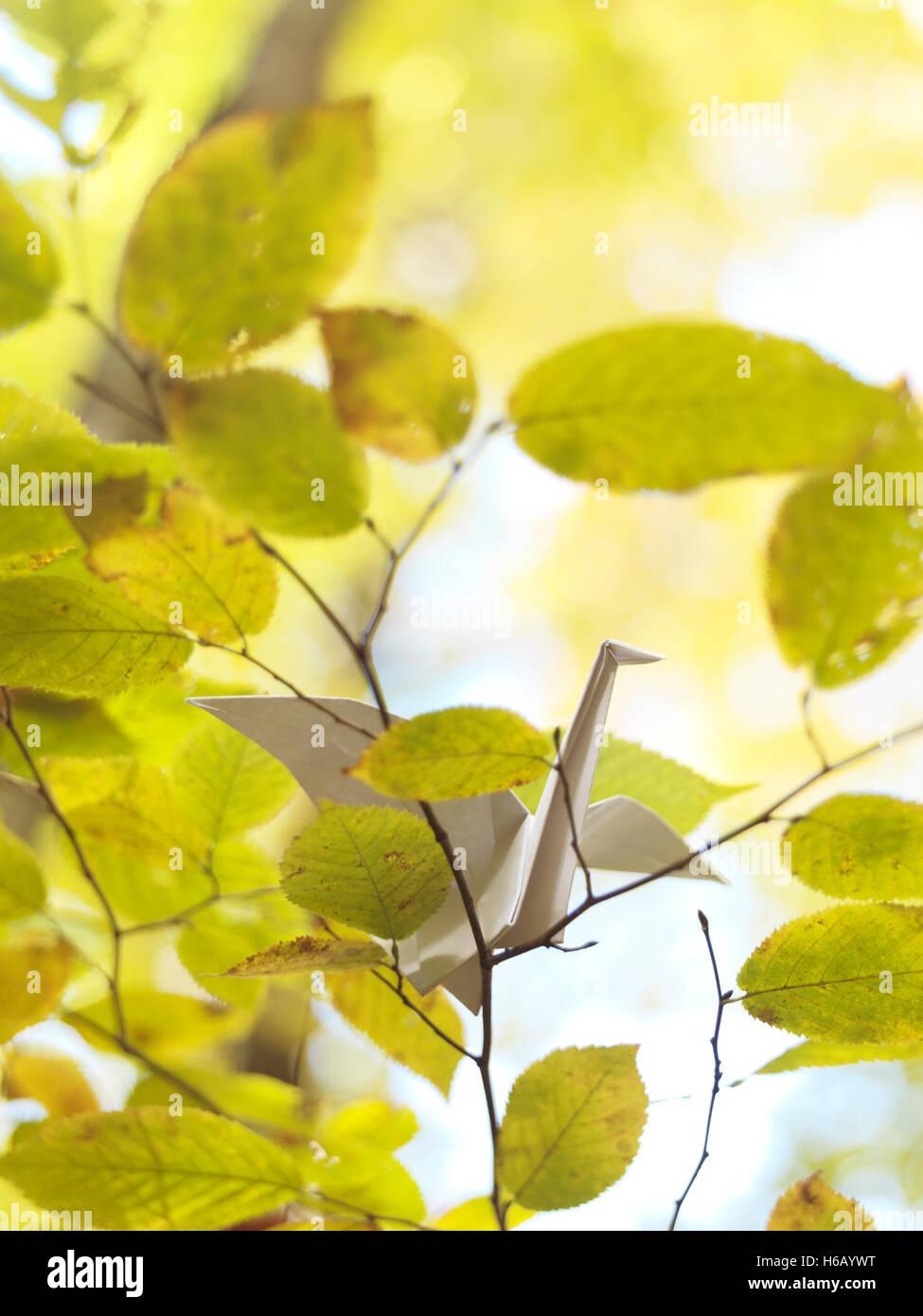 Origami Papier Kran auf einem Ast in der herbstlichen Natur Stockbild