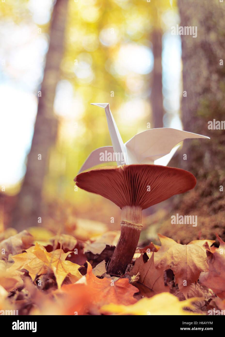Origami Papier Kran sitzt auf einem Pilz draußen im Herbst Natur-Einstellungen Stockbild