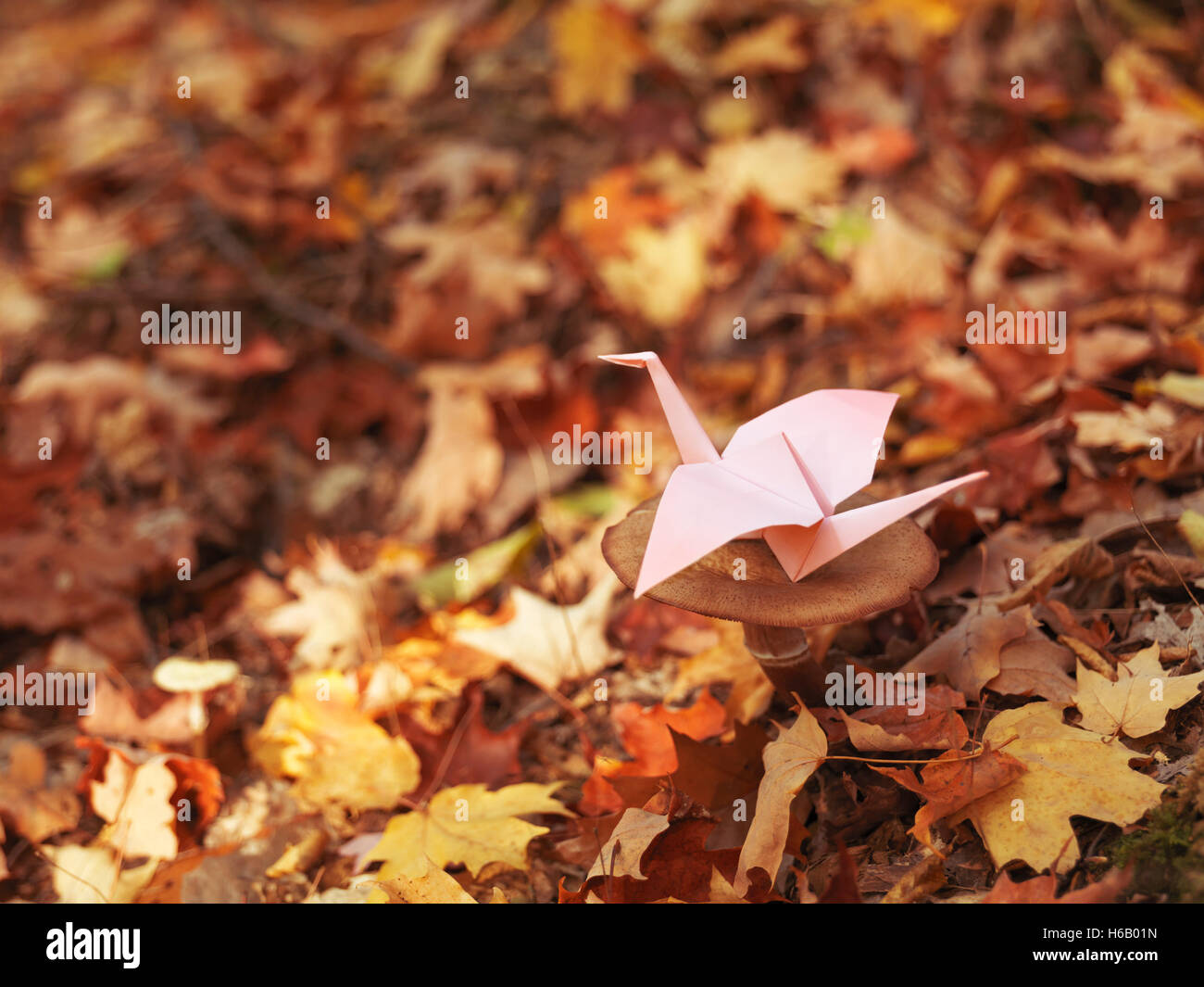 Origami Papier Kran sitzt auf einem Pilz im Herbst Natur Landschaft Stockbild
