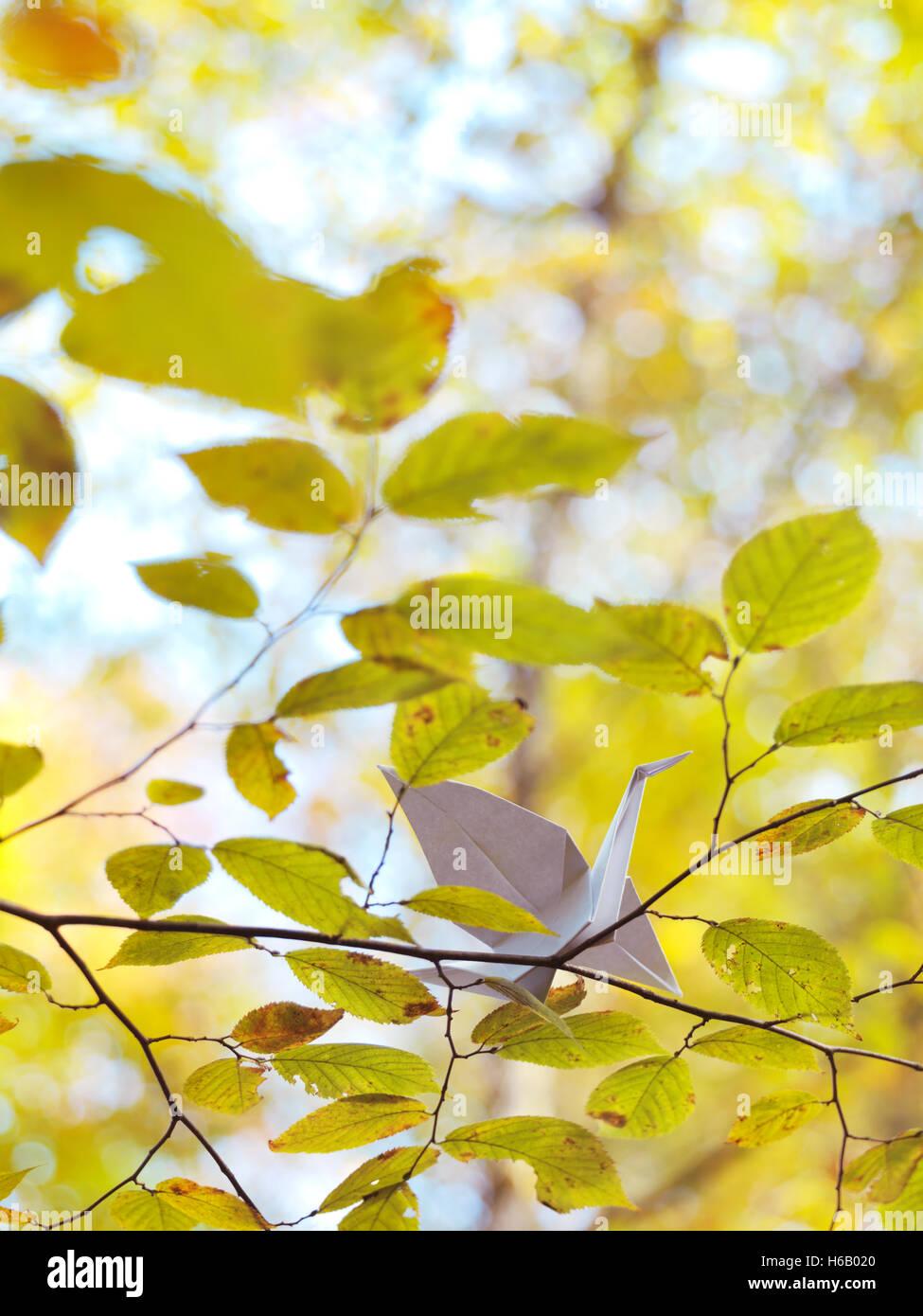 Origami Papier Kran auf einem Ast mit gelben Blättern im Herbst Natur Stockbild