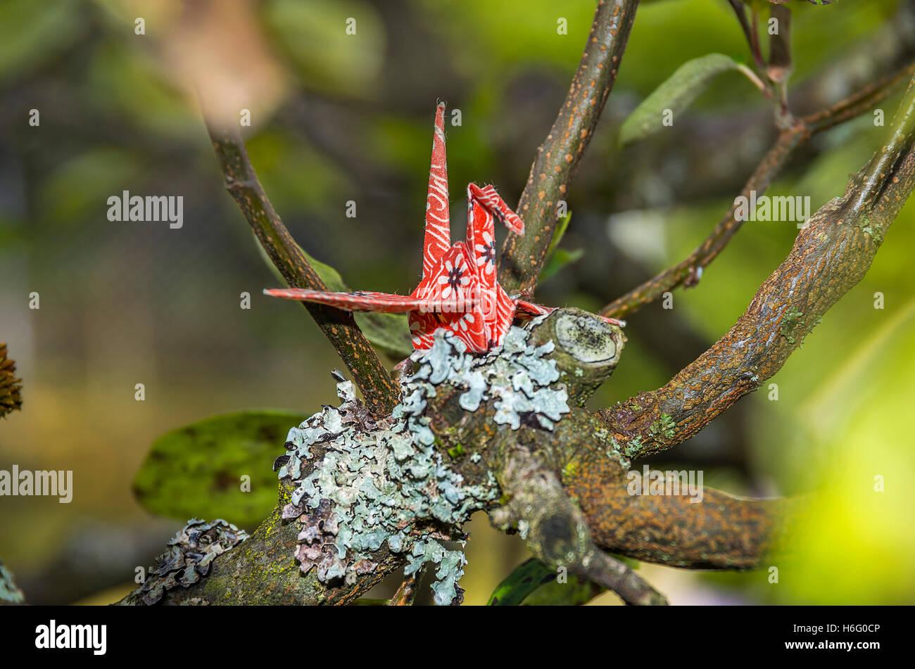 Origami Papier Kran mit original japanischen Origami Papier in einer natürlichen Umgebung einstellen. Stockfoto