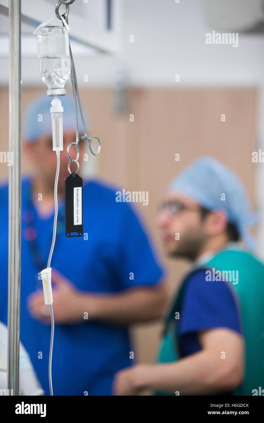 Zwei Anästhesisten in Diskussion während einer Operation in einem Krankenhaus-Theater Stockbild