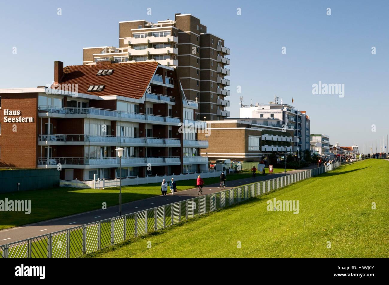Seestern Stockfotos & Seestern Bilder Alamy