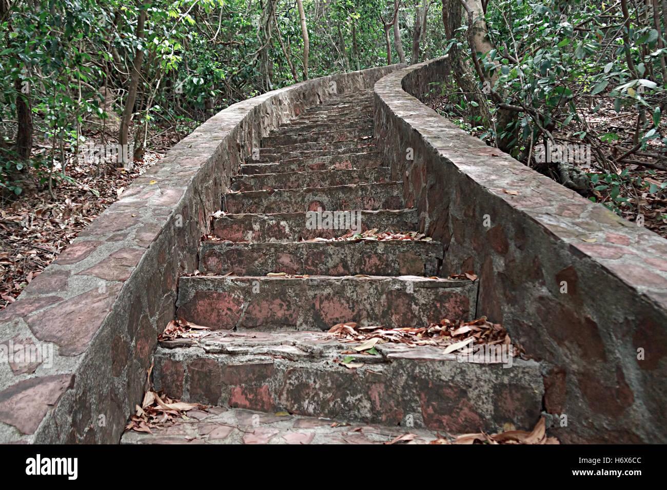Stein Treppen Alte Treppe Hintergrund Beton Treppe