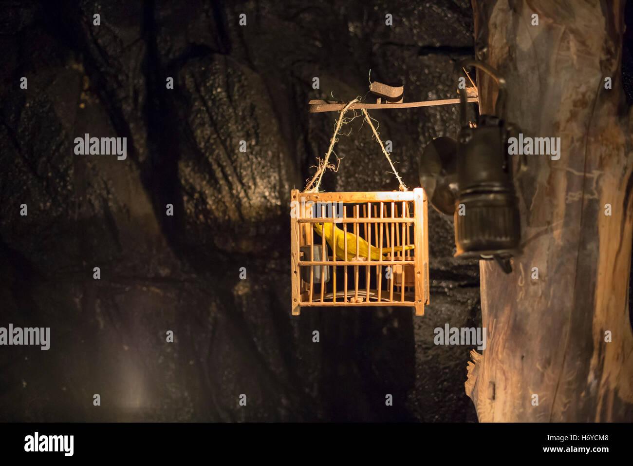 Leadville, Colorado - eine Anzeige von einem Kanarienvogel in einem Kohlebergwerk im National Mining Hall Of Fame Stockbild