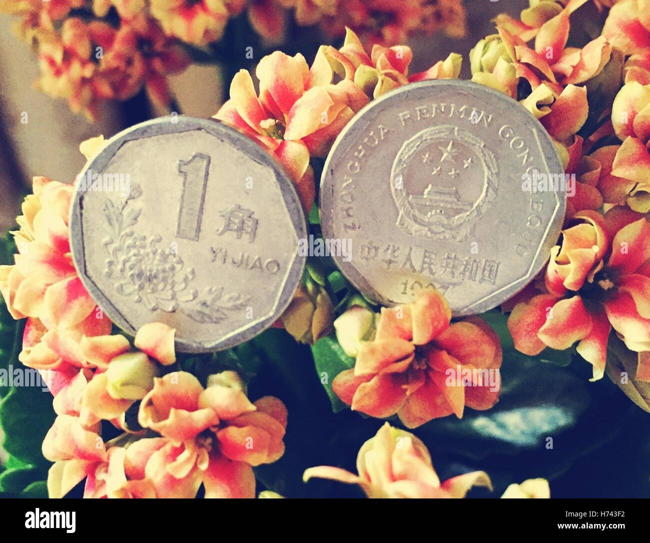 Jiao Coin Stockfotos Jiao Coin Bilder Alamy