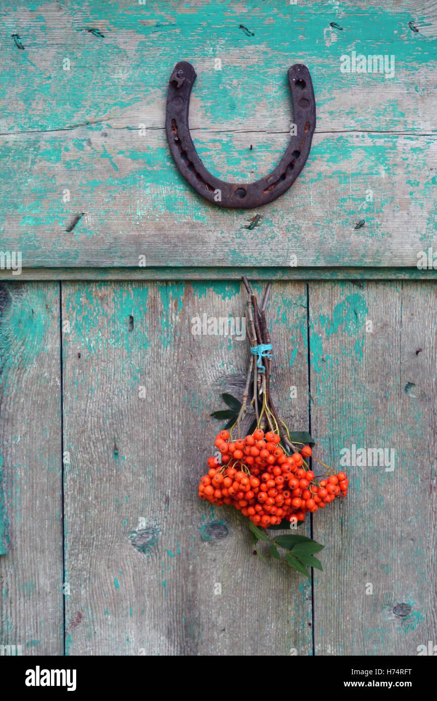 alte rostige Hufeisen Glückssymbol auf Tür und Rowan Beeren Haufen Stockbild