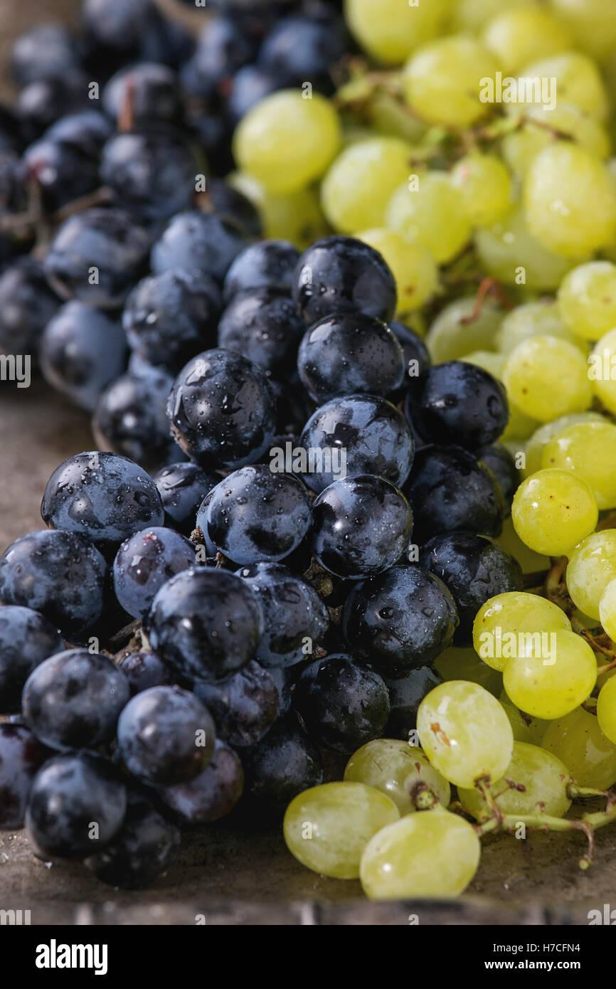 Die Trauben reifen nassen roten und weißen Trauben über alte Textur Metall Hintergrund. Nahaufnahme Stockbild