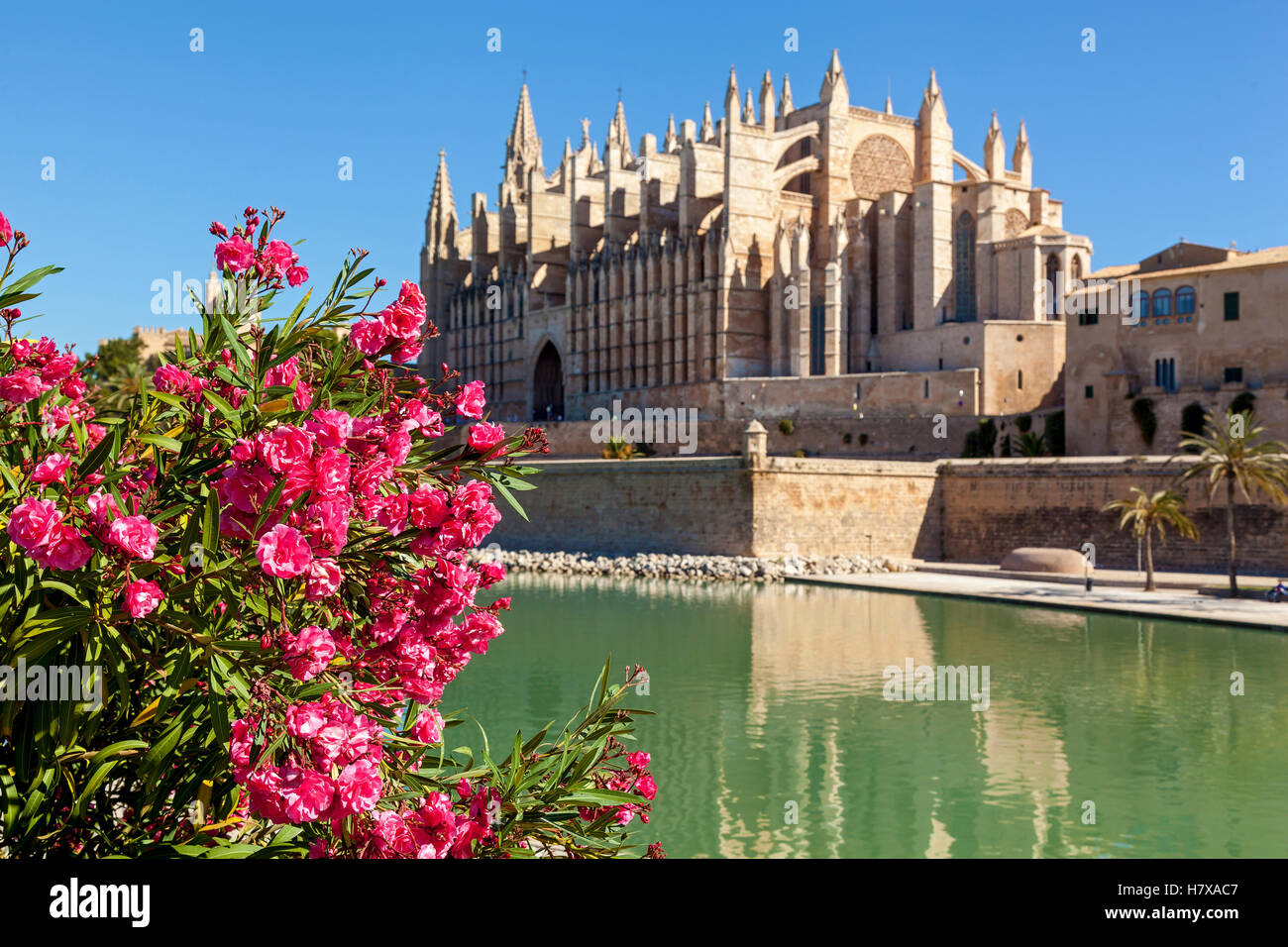 Die Kathedrale von Santa Maria von Palma, auch La Seu ist eine gotische römisch-katholische Kathedrale befindet Stockbild