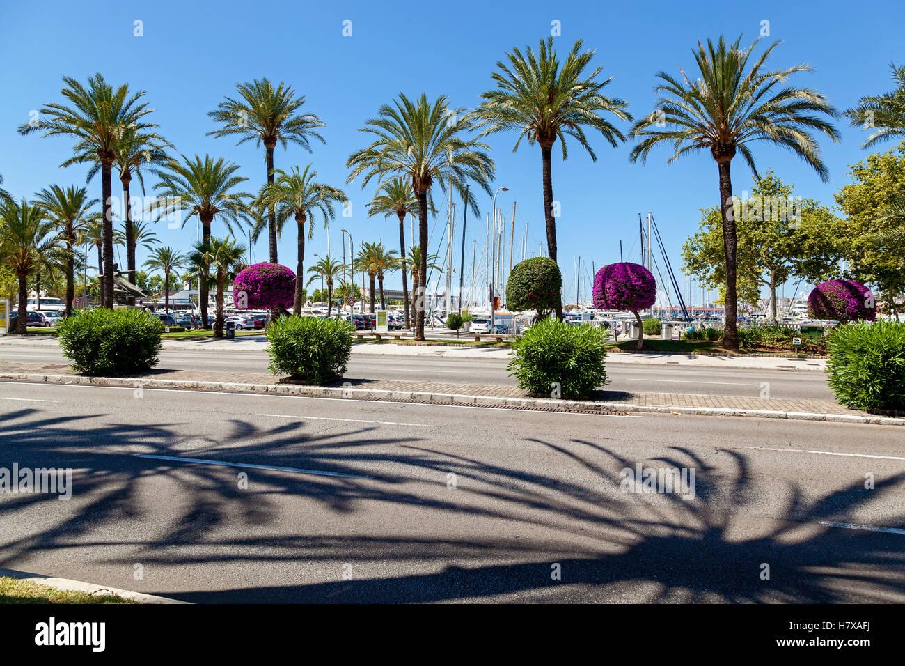 Kai in Palma De Mallorca. Kai in Palma De Mallorca an einem sonnigen Tag, die Aussicht auf den Hafen und zahlreiche Stockbild