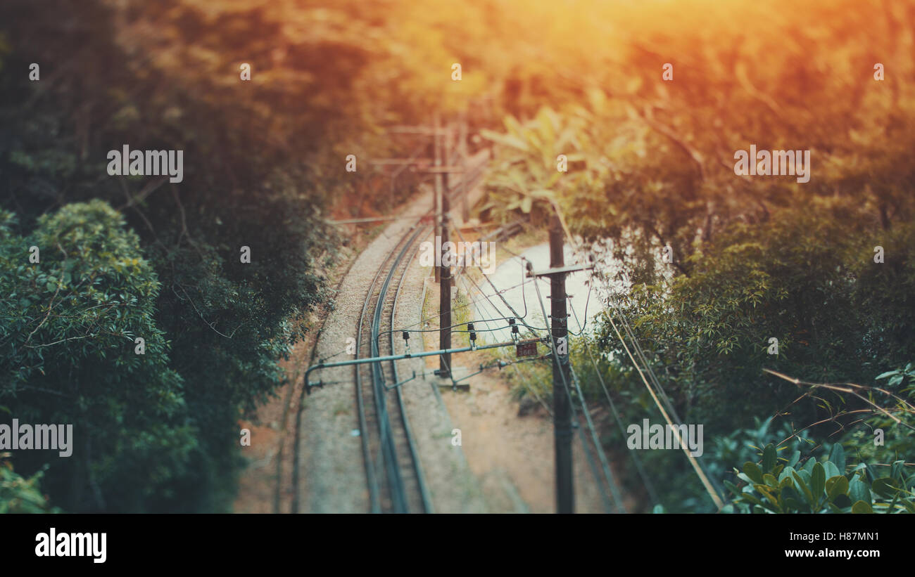 Jungle Railway Stockfotos & Jungle Railway Bilder - Alamy