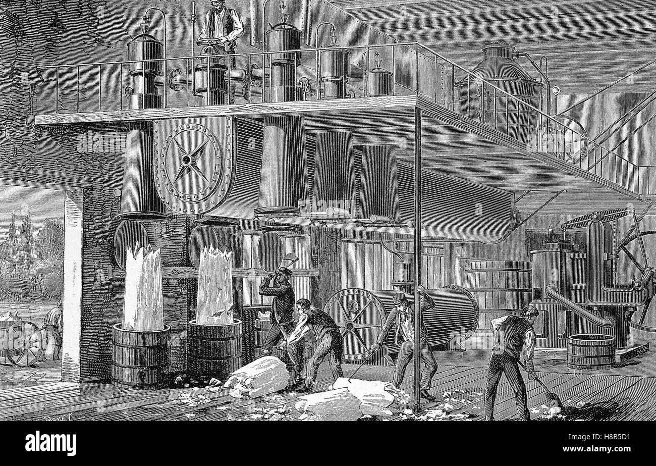 Arbeit in einer Eisfabrik, Holzschnitt aus dem Jahre 1892 Stockbild