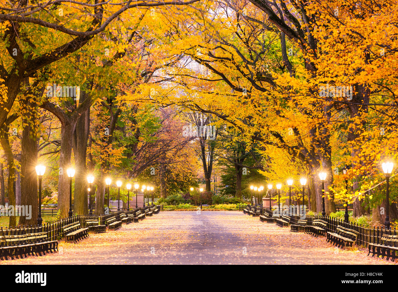 Central Park in The Mall in New York City während der Morgendämmerung Stunden. Stockbild