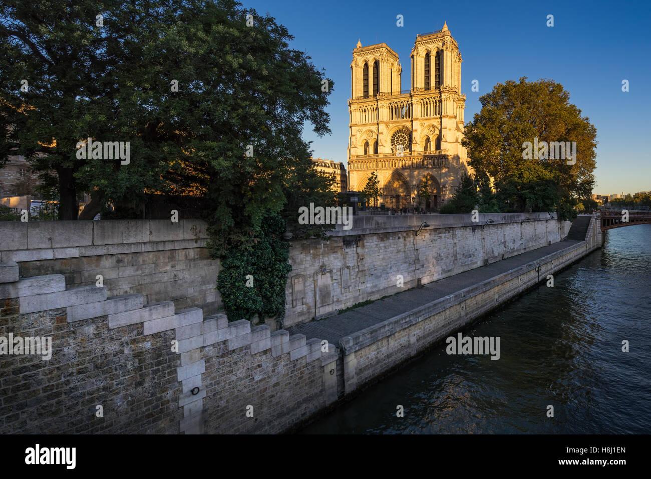 Kathedrale Notre Dame de Paris bei Sonnenuntergang mit dem Seineufer auf Île De La Cité. 4. Arrondissement, Stockbild