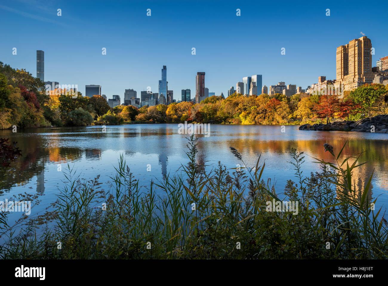Verlieben Sie sich im Central Park in The Lake Midtown und der Upper West Side Wolkenkratzer. Herbstlaub in New Stockbild