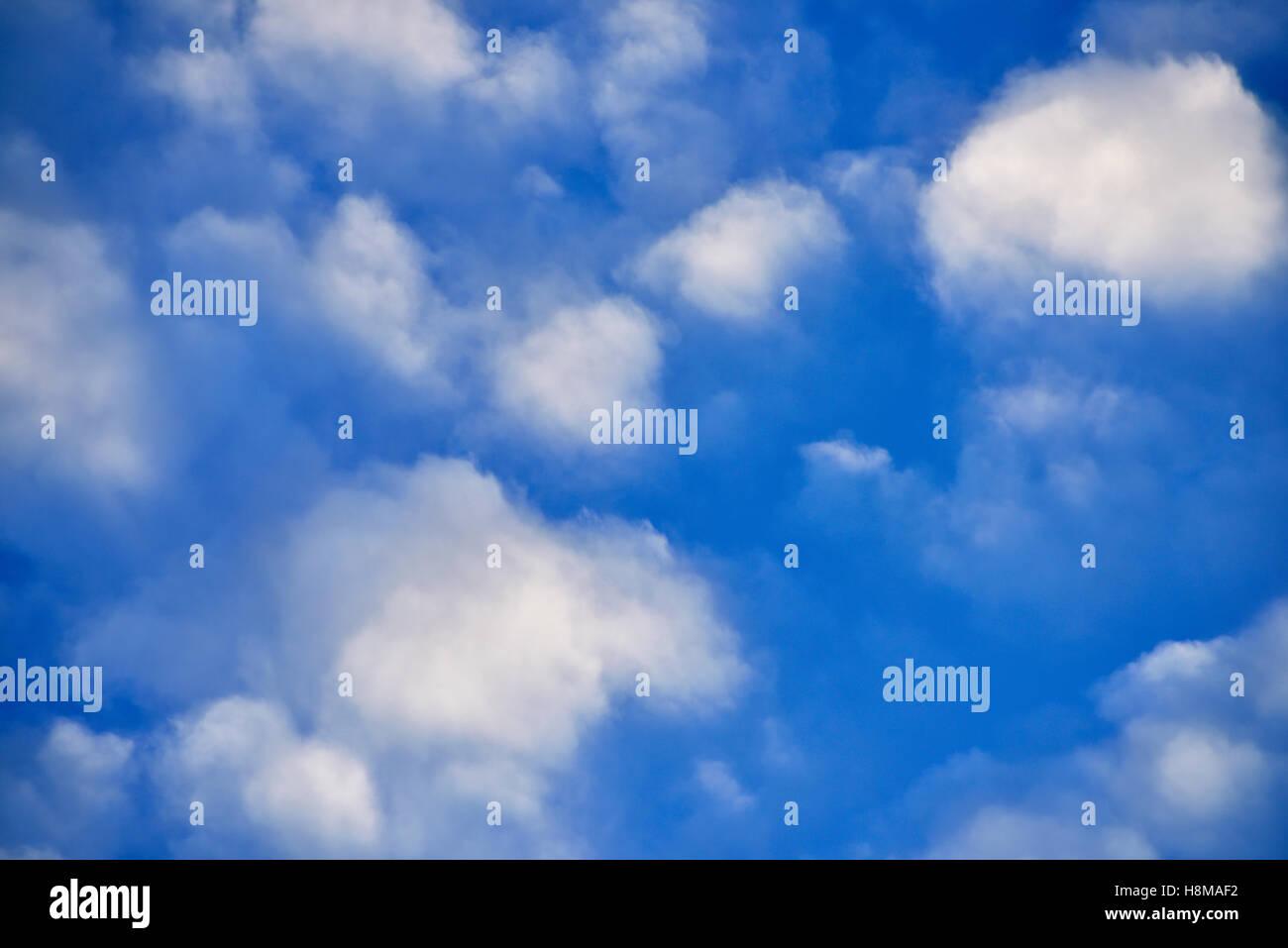 Wetter Phänomen Schäfchenwolken (Cirrocumulus) in den Himmel Stockbild